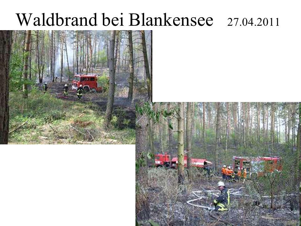 Waldbrand bei Blankensee 27.04.2011