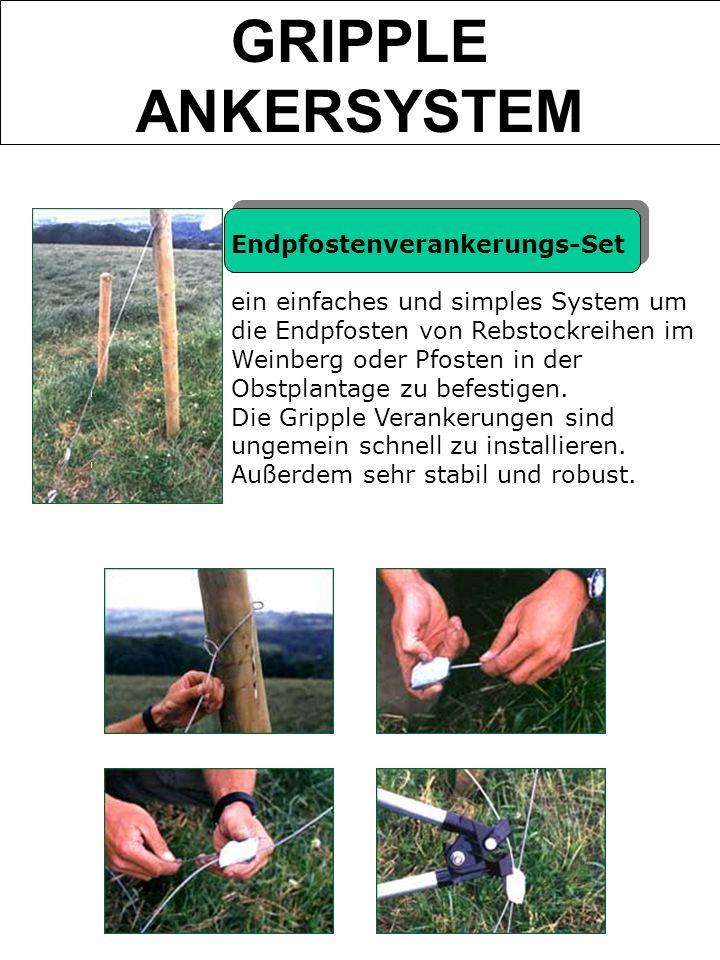 Endpfostenverankerungs-Set ein einfaches und simples System um die Endpfosten von Rebstockreihen im Weinberg oder Pfosten in der Obstplantage zu befes