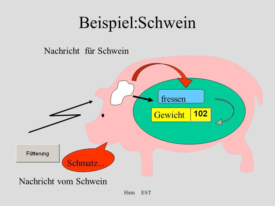 Ham EST Beispiel:Schwein fressen Gewicht Nachricht für Schwein Schmatz... Nachricht vom Schwein
