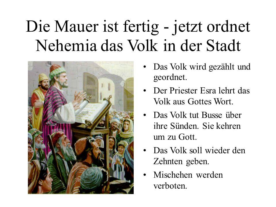 Die Mauer ist fertig - jetzt ordnet Nehemia das Volk in der Stadt Das Volk wird gezählt und geordnet. Der Priester Esra lehrt das Volk aus Gottes Wort