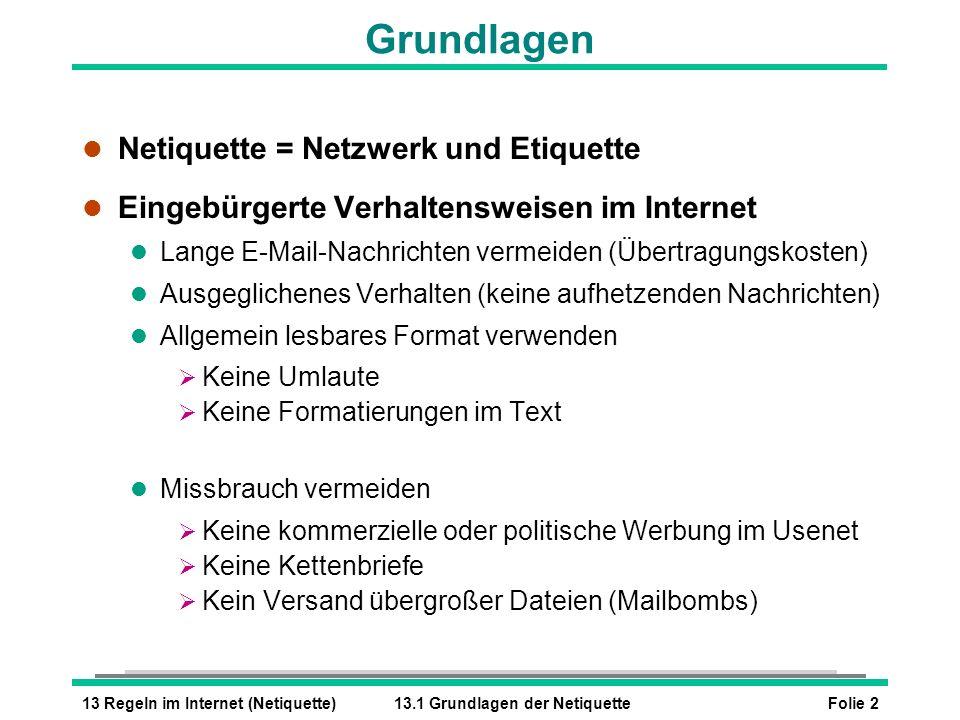 Folie 213 Regeln im Internet (Netiquette)13.1 Grundlagen der Netiquette Grundlagen l Netiquette = Netzwerk und Etiquette l Eingebürgerte Verhaltenswei