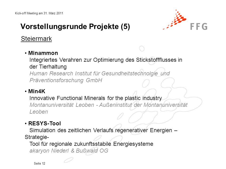 Kick-off Meeting am 31. März 2011 Seite 12 Vorstellungsrunde Projekte (5) RESYS-Tool Simulation des zeitlichen Verlaufs regenerativer Energien – Strat