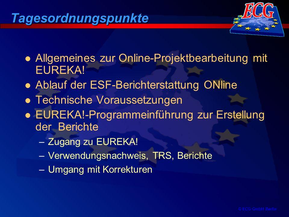 © ECG GmbH Berlin -Tägliche Sicherung aller Daten erfolgt bei ECG Eine Sicherung des Datenbestandes beim Nutzer entfällt somit Ein Ausfall der Technik oder der Verbindung beim Nutzer hat damit keinen Datenverlust zur Folge Alle am Verfahren Beteiligten greifen auf die gleichen Primärdaten entsprechend der vergebenen Zugriffsrechte zu Durch eine eineindeutige Legitimation werden die Zugriffsrechte auf die EUREKA!-Datenbank gesichert Die Weitergabe der Rechte erfolgt mit einer verschlüsselten Verbindung (SSL) Datensicherung für die Projektebene