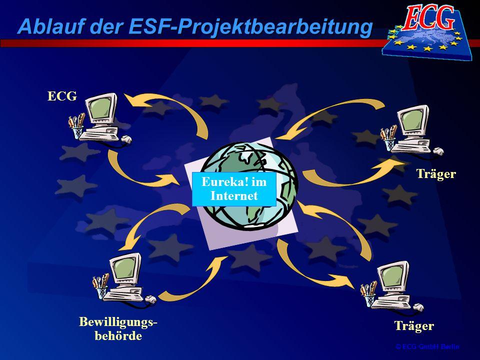 © ECG GmbH Berlin Träger Bewilligungs- behörde ECG Eureka! im Internet Ablauf der ESF-Projektbearbeitung
