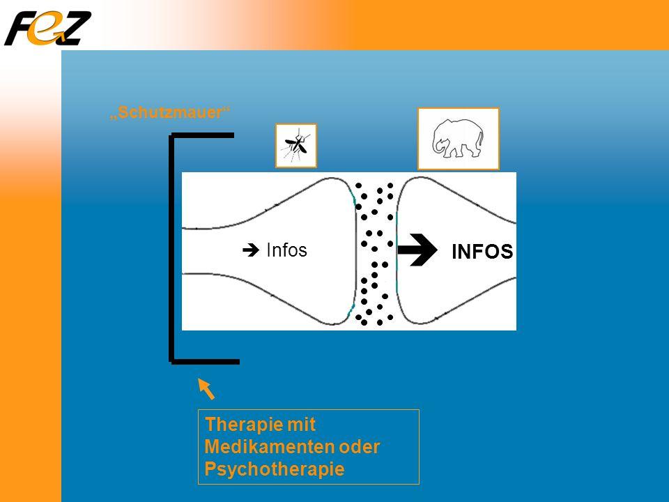 Therapie mit Medikamenten oder Psychotherapie Schutzmauer Infos INFOS
