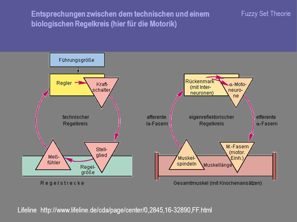 Fuzzy Set Theorie Lifeline http://www.lifeline.de/cda/page/center/0,2845,16-32890,FF.html Entsprechungen zwischen dem technischen und einem biologisch