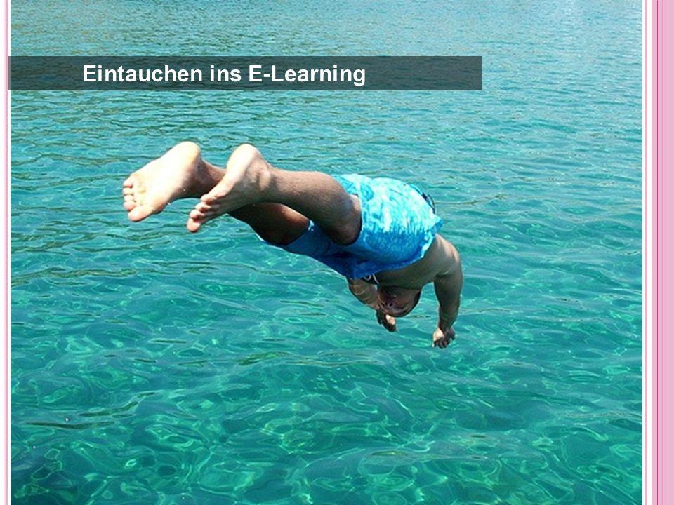Eintauchen ins E-Learning