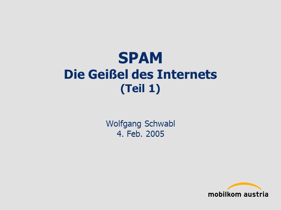 SPAM Die Geißel des Internets (Teil 1) Wolfgang Schwabl 4. Feb. 2005
