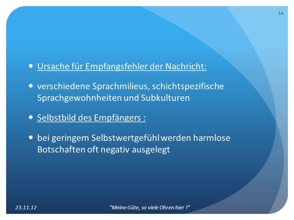 Ursache für Empfangsfehler der Nachricht: verschiedene Sprachmilieus, schichtspezifische Sprachgewohnheiten und Subkulturen Selbstbild des Empfängers