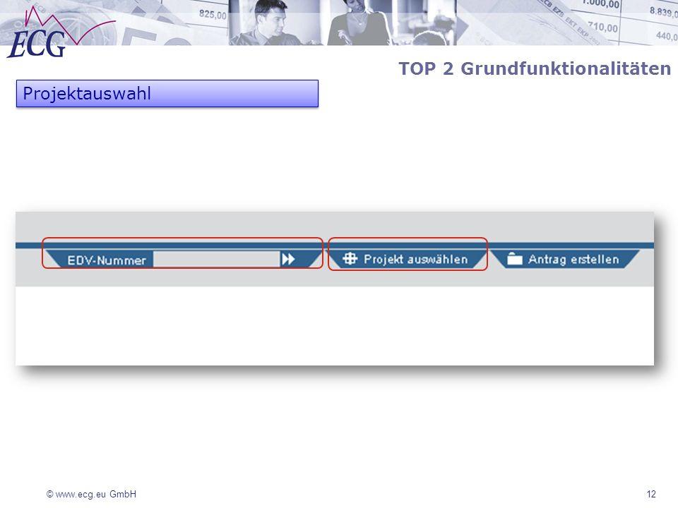© www.ecg.eu GmbH12 TOP 2 Grundfunktionalitäten Projektauswahl