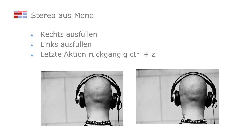 Stereo aus Mono Rechts ausfüllen Links ausfüllen Letzte Aktion rückgängig ctrl + z