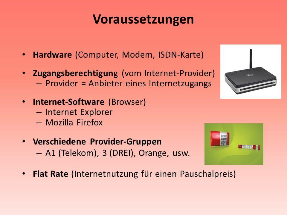 Voraussetzungen Hardware (Computer, Modem, ISDN-Karte) Zugangsberechtigung (vom Internet-Provider) – Provider = Anbieter eines Internetzugangs Interne