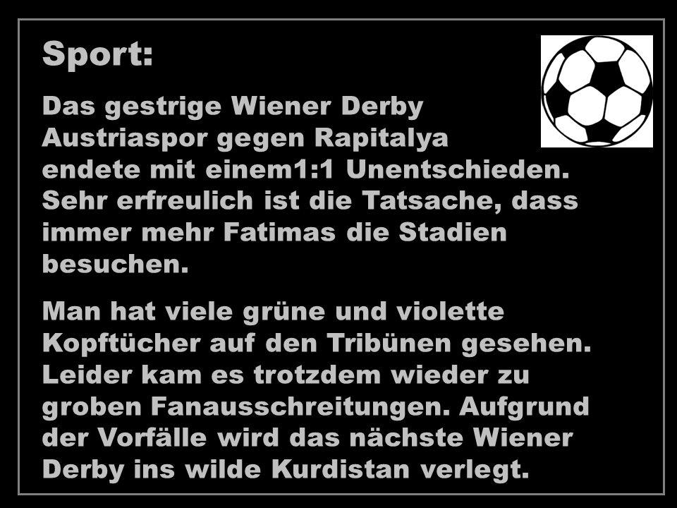 Sport: Das gestrige Wiener Derby Austriaspor gegen Rapitalya endete mit einem1:1 Unentschieden.