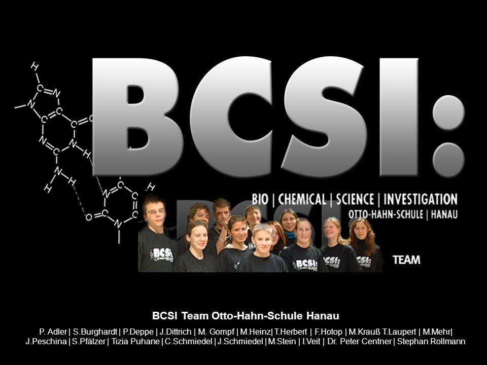 BCSI Team Otto-Hahn-Schule Hanau P. Adler | S.Burghardt | P.Deppe | J.Dittrich | M. Gompf | M.Heinz| T.Herbert | F.Hotop | M.Krauß T.Laupert | M.Mehr|