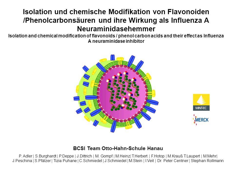 Isolation und chemische Modifikation von Flavonoiden /Phenolcarbonsäuren und ihre Wirkung als Influenza A Neuraminidasehemmer Isolation and chemical m