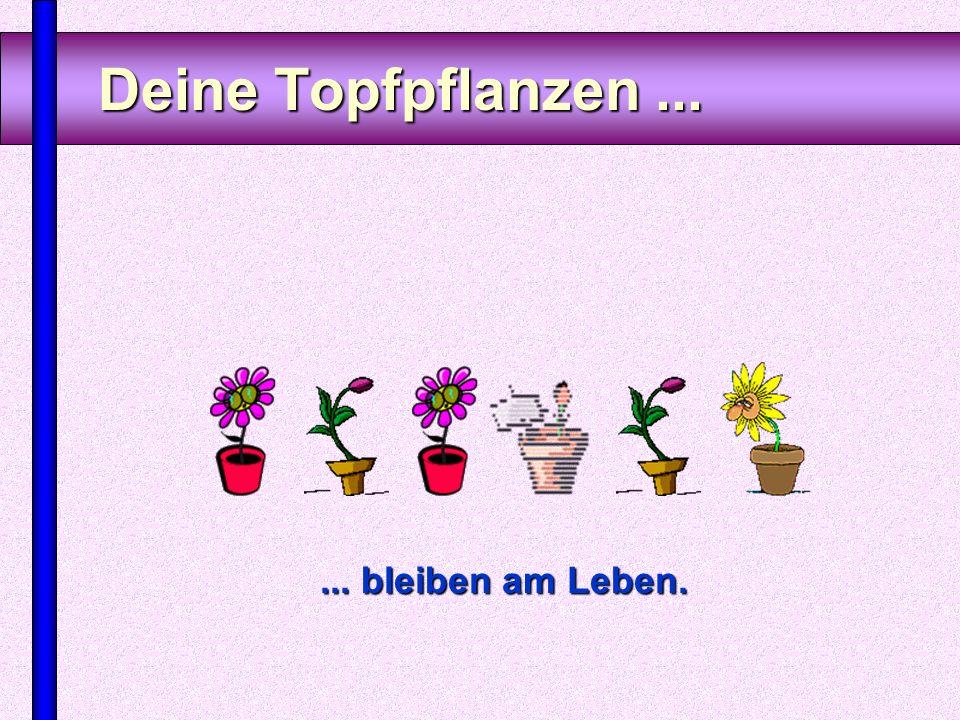 www.FunFriends.de Einige Zeichen für das Älterwerden Merkst Du schon was