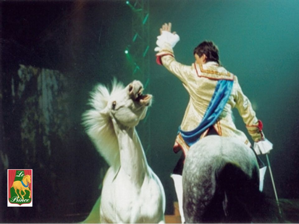 The story of the Equestrian Horse Opera Le Prince Le Prince – Creation in Harmony is a wonderful love story based on the legend of a French Prince, Louis Henri de Bourbon, 7th Prince de Condé, who lived 300 years ago.