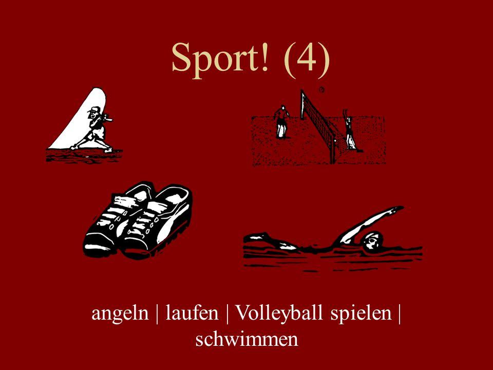 Sport! (4) angeln | laufen | Volleyball spielen | schwimmen