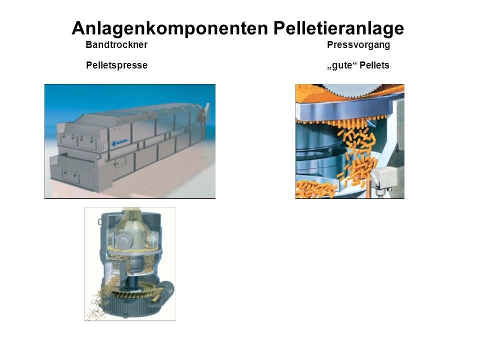Anlagenkomponenten Pelletieranlage Bandtrockner Pressvorgang Pelletspresse gute Pellets