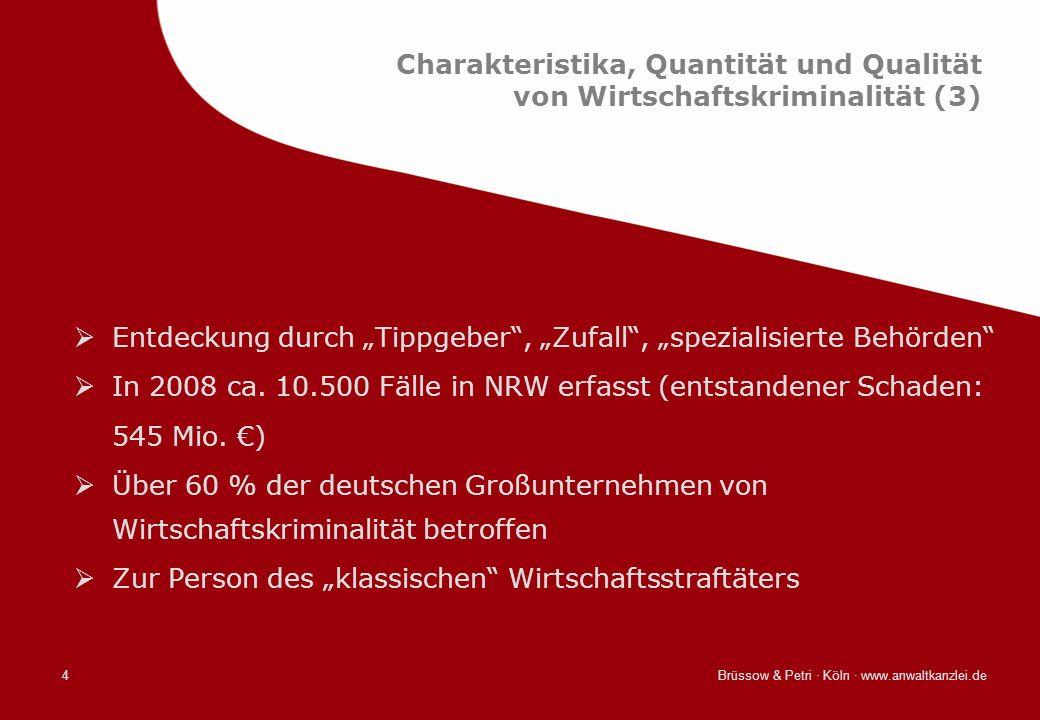 Brüssow & Petri · Köln · www.anwaltkanzlei.de4 Charakteristika, Quantität und Qualität von Wirtschaftskriminalität (3) Entdeckung durch Tippgeber, Zuf