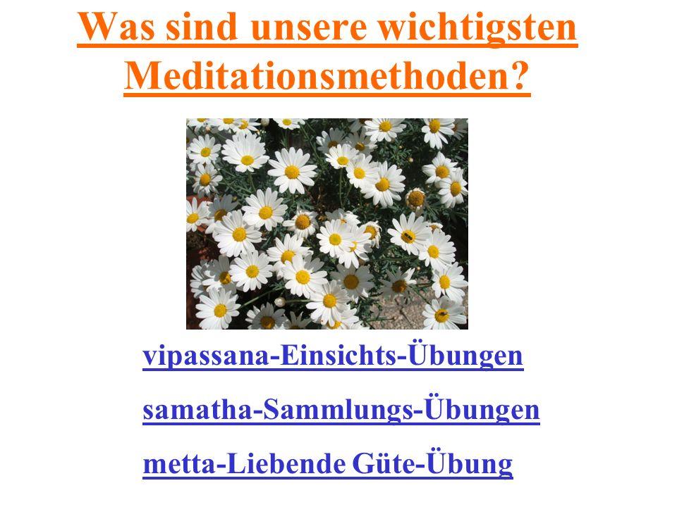Was sind unsere wichtigsten Meditationsmethoden? vipassana-Einsichts-Übungen samatha-Sammlungs-Übungen metta-Liebende Güte-Übung