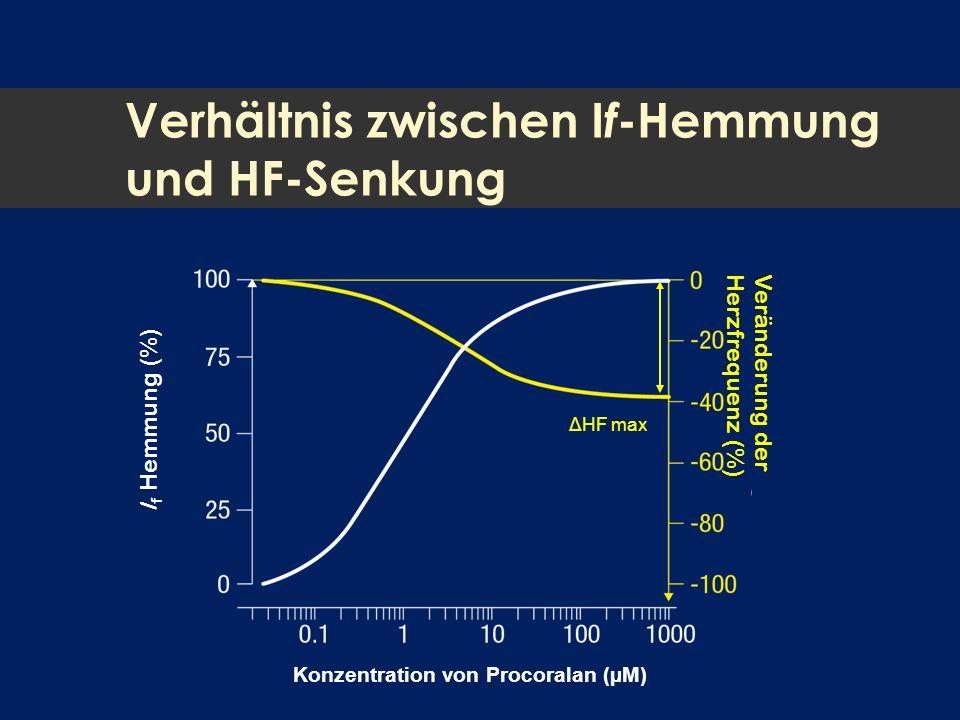 Verhältnis zwischen I f -Hemmung und HF-Senkung I f Hemmung (%) Veränderung der Herzfrequenz (%) Konzentration von Procoralan (µM) ΔHF max
