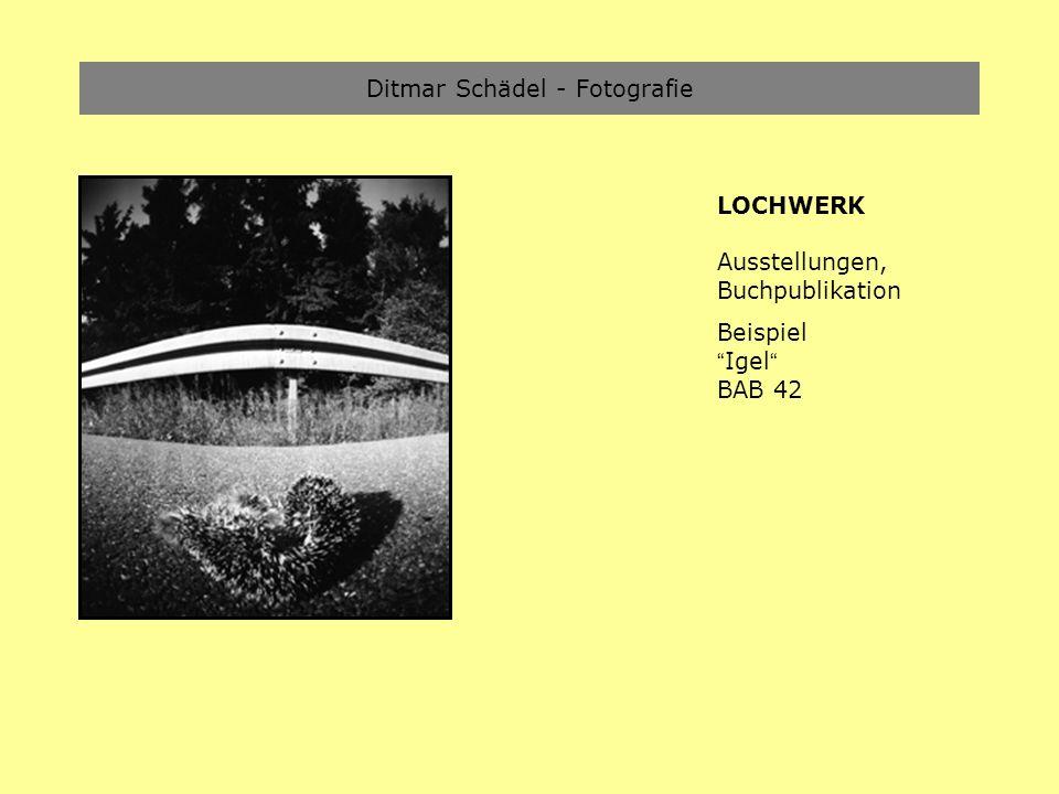 Ditmar Schädel - Fotografie LOCHWERK Ausstellungen, Buchpublikation Beispiel Igel BAB 42