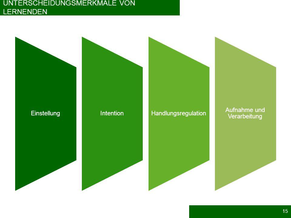 UNTERSCHEIDUNGSMERKMALE VON LERNENDEN EinstellungIntention Handlungsregulation Aufnahme und Verarbeitung 15
