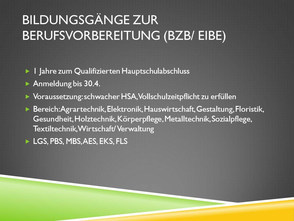 BILDUNGSGÄNGE ZUR BERUFSVORBEREITUNG (BZB/ EIBE) 1 Jahre zum Qualifizierten Hauptschulabschluss Anmeldung bis 30.4. Voraussetzung: schwacher HSA, Voll