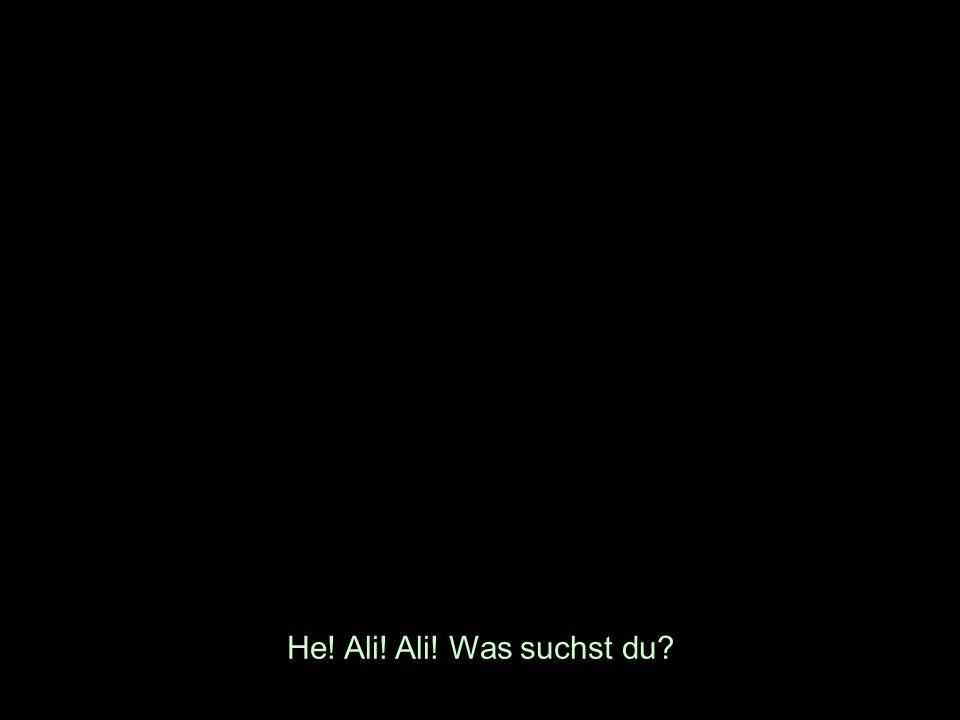 He! Ali! Ali! Was suchst du?