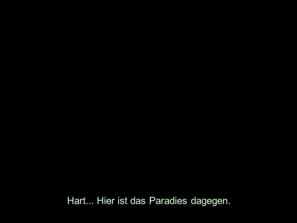 Hart... Hier ist das Paradies dagegen.