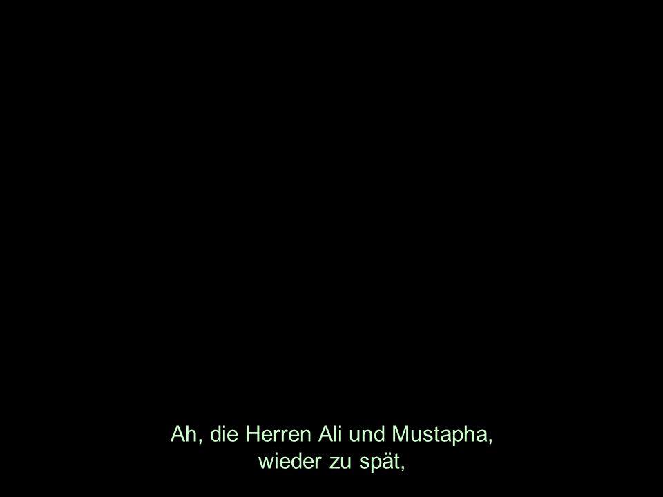 Ah, die Herren Ali und Mustapha, wieder zu spät,