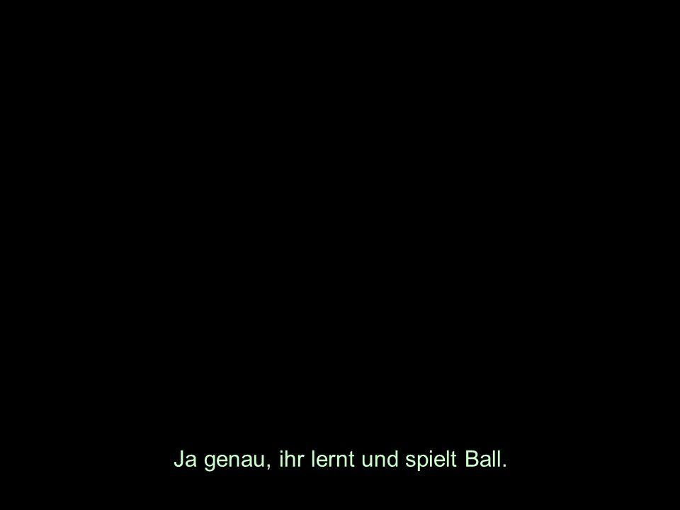 Ja genau, ihr lernt und spielt Ball.