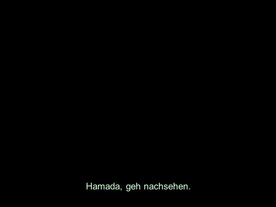 Hamada, geh nachsehen.