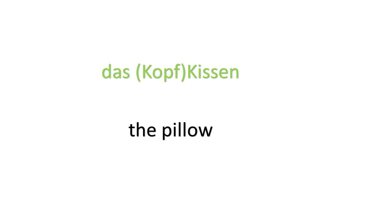 das (Kopf)Kissen the pillow