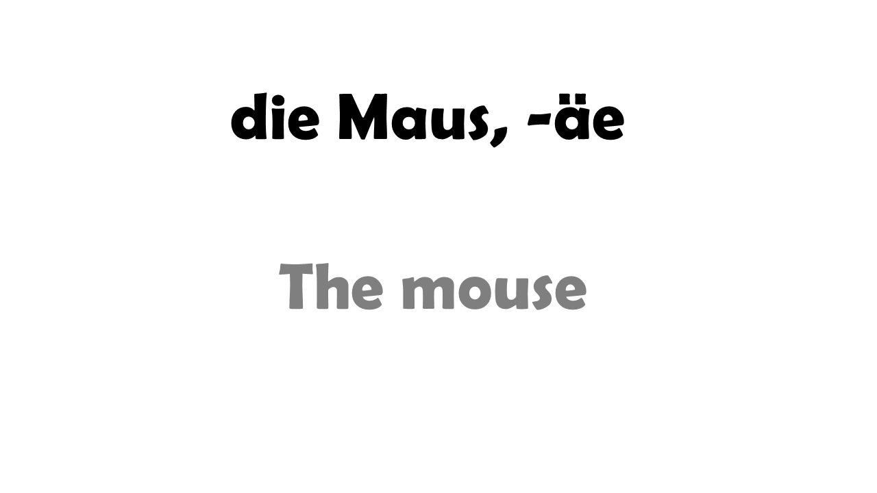 die Maus, -äe The mouse