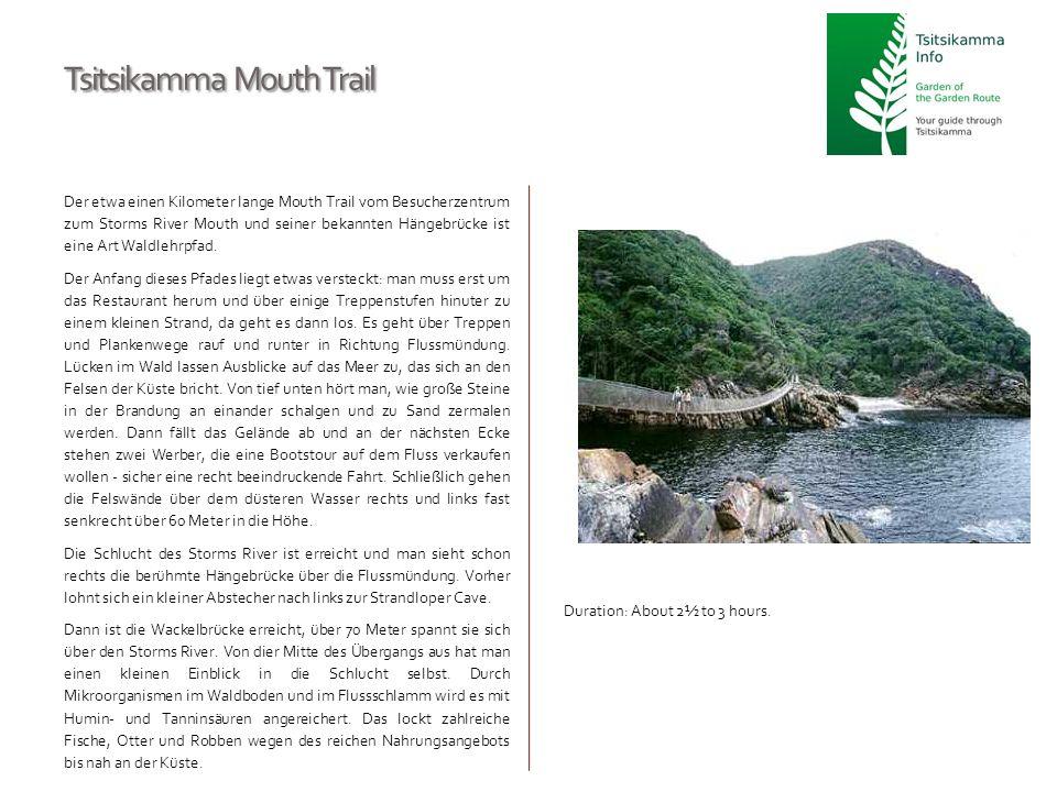 Tsitsikamma Mouth Trail Der etwa einen Kilometer lange Mouth Trail vom Besucherzentrum zum Storms River Mouth und seiner bekannten Hängebrücke ist ein