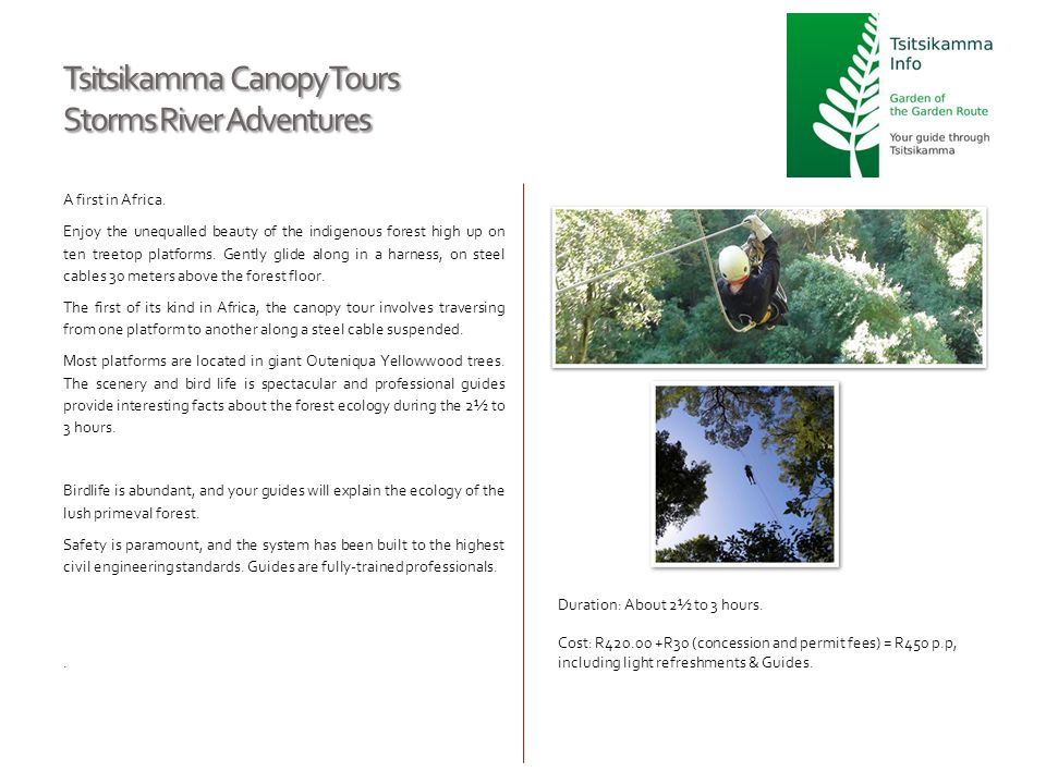 Tsitsikamma Canopy Tours Storms River Adventures A first in Africa. Enjoy the unequalled beauty of the indigenous forest high up on ten treetop platfo