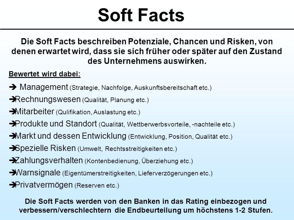 Soft Facts Die Soft Facts beschreiben Potenziale, Chancen und Risken, von denen erwartet wird, dass sie sich früher oder später auf den Zustand des Un