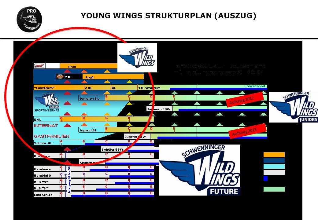 YOUNG WINGS STRUKTURPLAN (AUSZUG) Aufstieg 2012 Aufstieg 2013