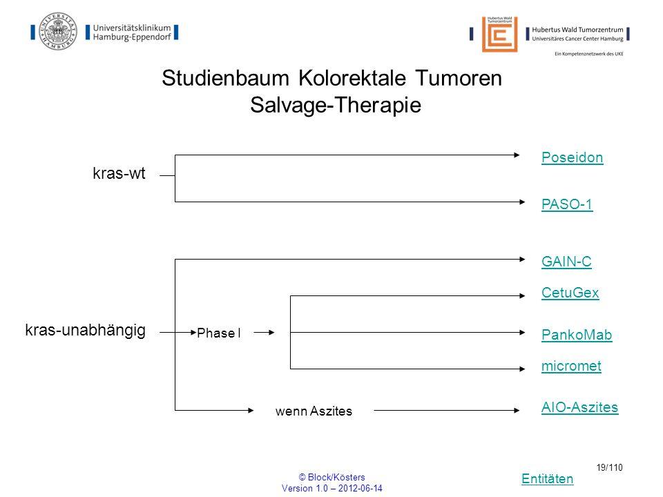 Entitäten © Block/Kösters Version 1.0 – 2012-06-14 19/110 Studienbaum Kolorektale Tumoren Salvage-Therapie PASO-1 wenn Aszites kras-wt Poseidon CetuGe
