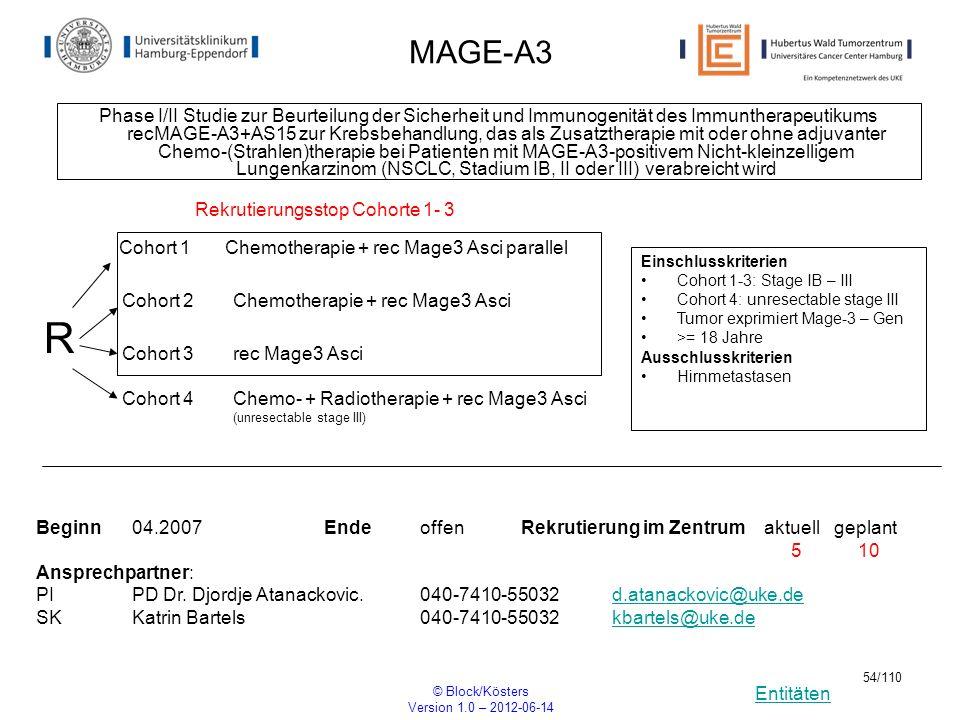 Entitäten © Block/Kösters Version 1.0 – 2012-06-14 54/110 MAGE-A3 Phase I/II Studie zur Beurteilung der Sicherheit und Immunogenität des Immuntherapeu