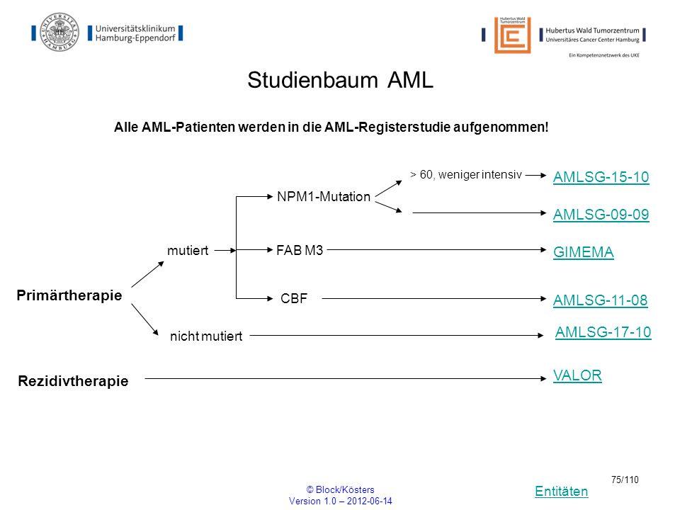 Entitäten © Block/Kösters Version 1.0 – 2012-06-14 75/110 Studienbaum AML GIMEMA NPM1-Mutation > 60, weniger intensiv Alle AML-Patienten werden in die