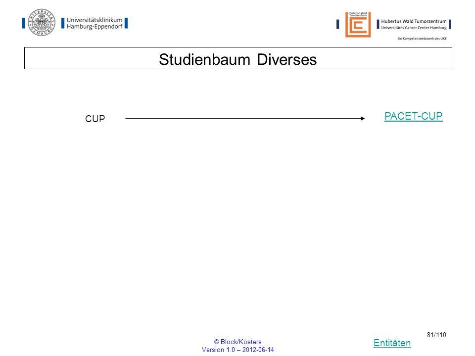 Entitäten © Block/Kösters Version 1.0 – 2012-06-14 81/110 Studienbaum Diverses CUP PACET-CUP