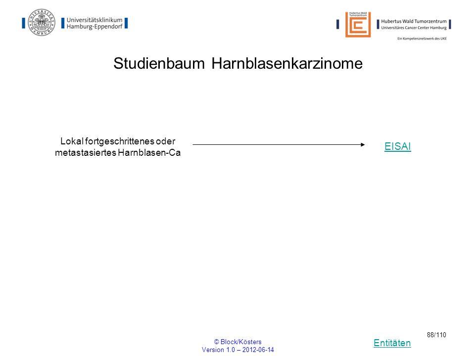 Entitäten © Block/Kösters Version 1.0 – 2012-06-14 88/110 Studienbaum Harnblasenkarzinome Lokal fortgeschrittenes oder metastasiertes Harnblasen-Ca EI