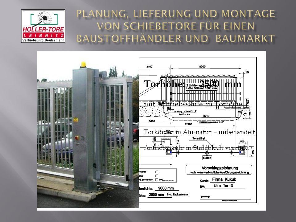 111 Torhöhe: 2500 mm mit Antriebssäule in Torhöhe Torkörper in Alu-natur – unbehandelt Antriebssäule in Stahlblech verzinkt