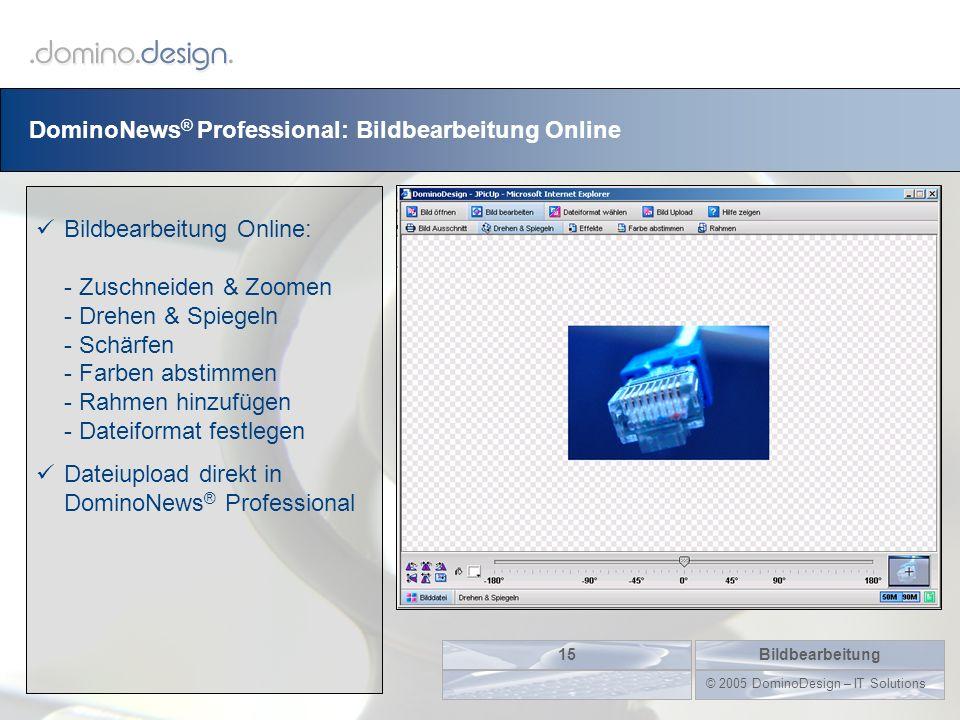 DominoNews ® Professional: Bildbearbeitung Online Bildbearbeitung15 © 2005 DominoDesign – IT Solutions Bildbearbeitung Online: - Zuschneiden & Zoomen