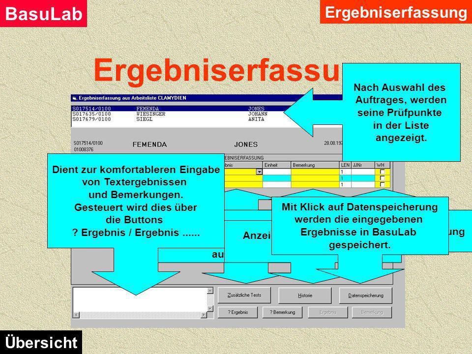Ergebniserfassung BasuLab Übersicht Hauptmenü Ergebniserfassung Auswahl über die Art der Eingabe