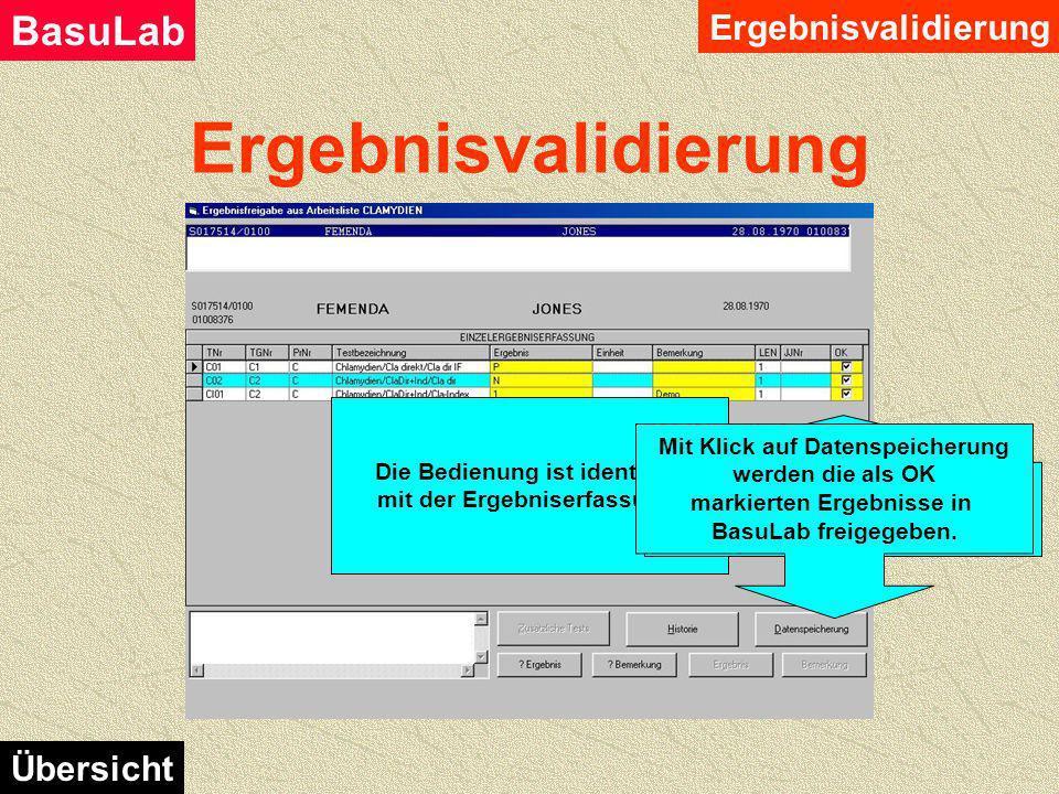 Ergebnisvalidierung BasuLab Übersicht Hauptmenü Ergebnisvalidierung Auswahl über die Art der Eingabe