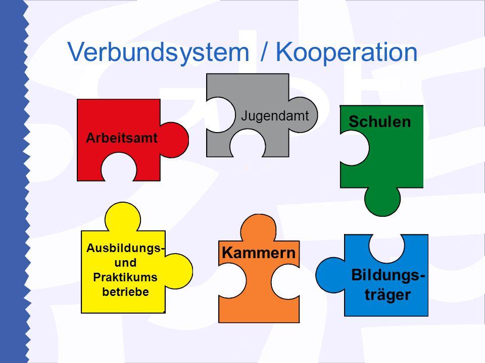 Verbundsystem / Kooperation Arbeitsamt Ausbildungs- und Praktikums betriebe Jugendamt Bildungs- träger Schulen Kammern